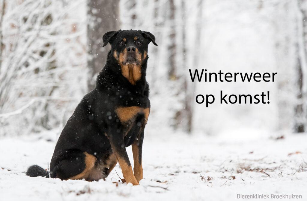 winterweer